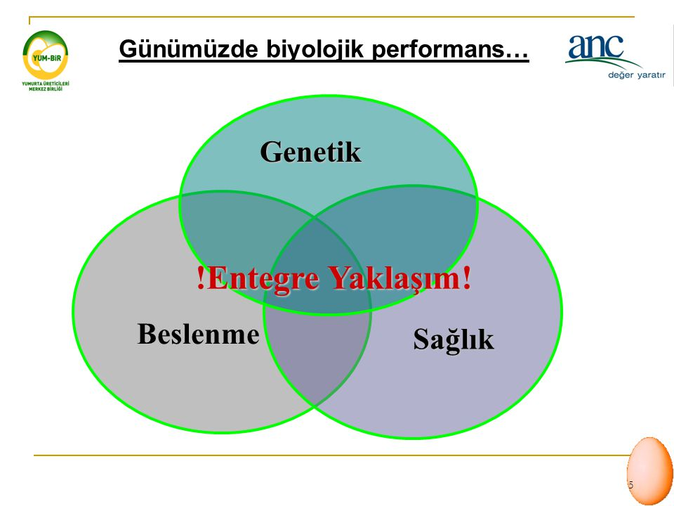 Günümüzde biyolojik performans…