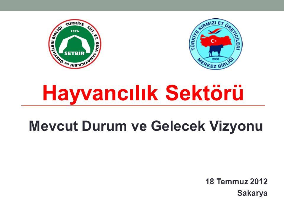 Mevcut Durum ve Gelecek Vizyonu 18 Temmuz 2012 Sakarya