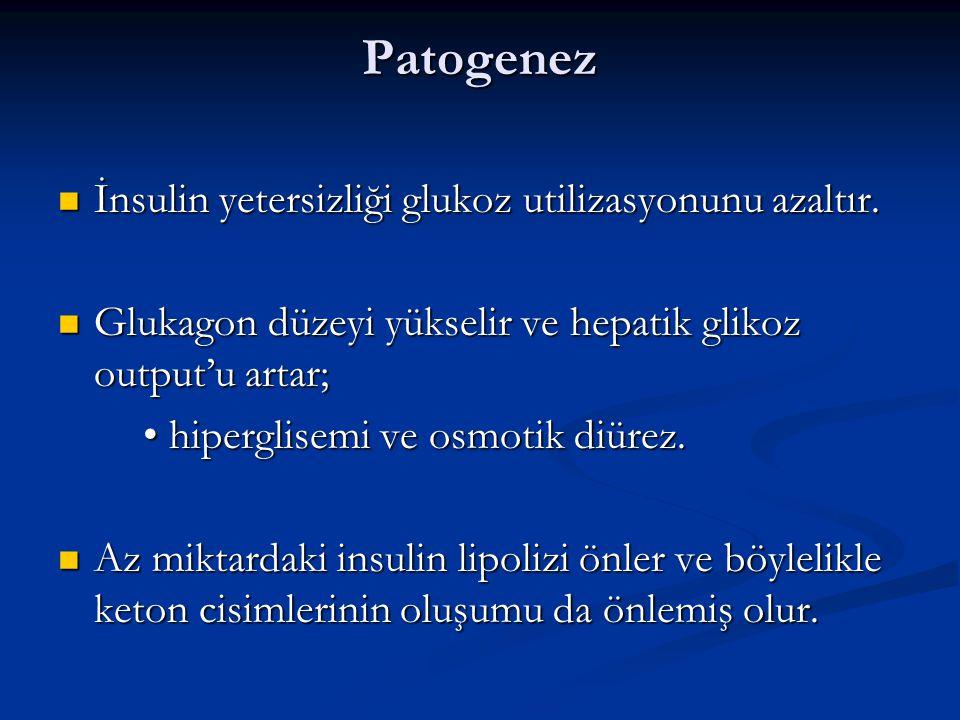 Patogenez İnsulin yetersizliği glukoz utilizasyonunu azaltır.