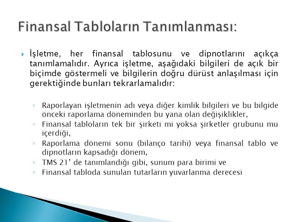 Finansal Tabloların Tanımlanması: