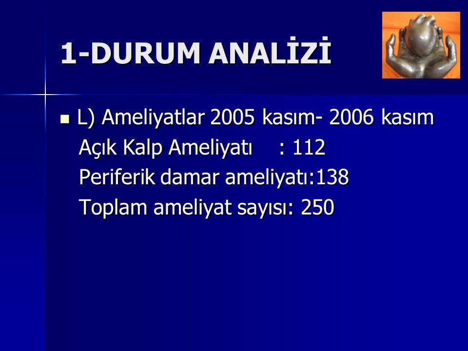 1-DURUM ANALİZİ L) Ameliyatlar 2005 kasım- 2006 kasım