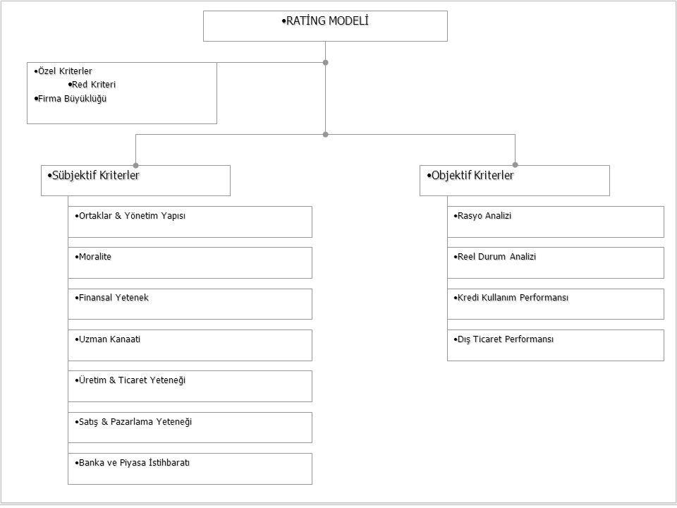 RATİNG MODELİ Sübjektif Kriterler Objektif Kriterler Özel Kriterler