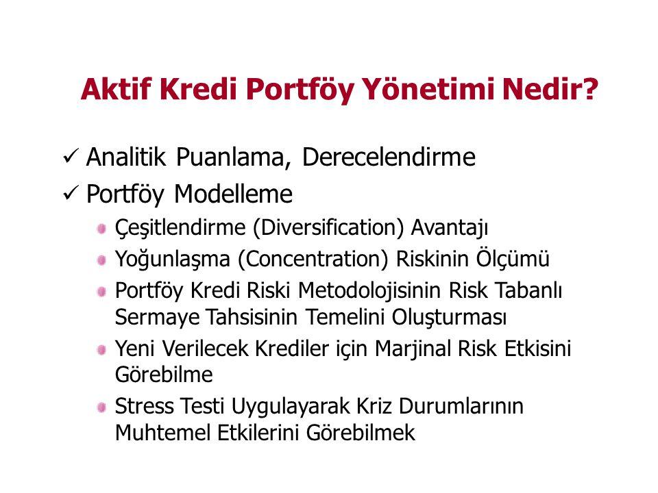 Aktif Kredi Portföy Yönetimi Nedir