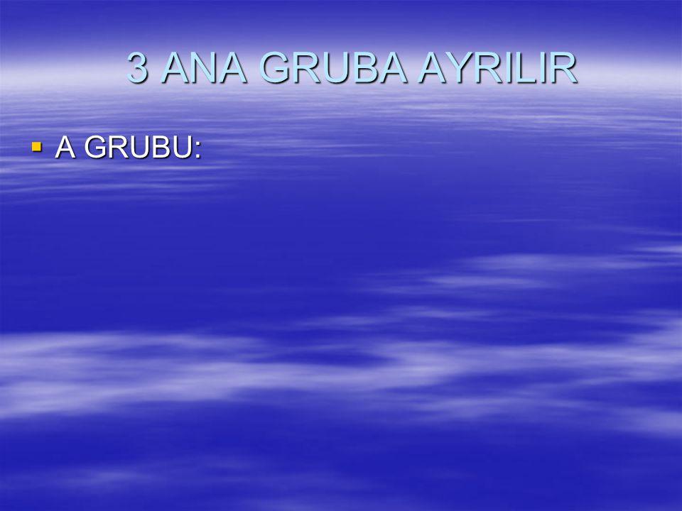 3 ANA GRUBA AYRILIR A GRUBU: