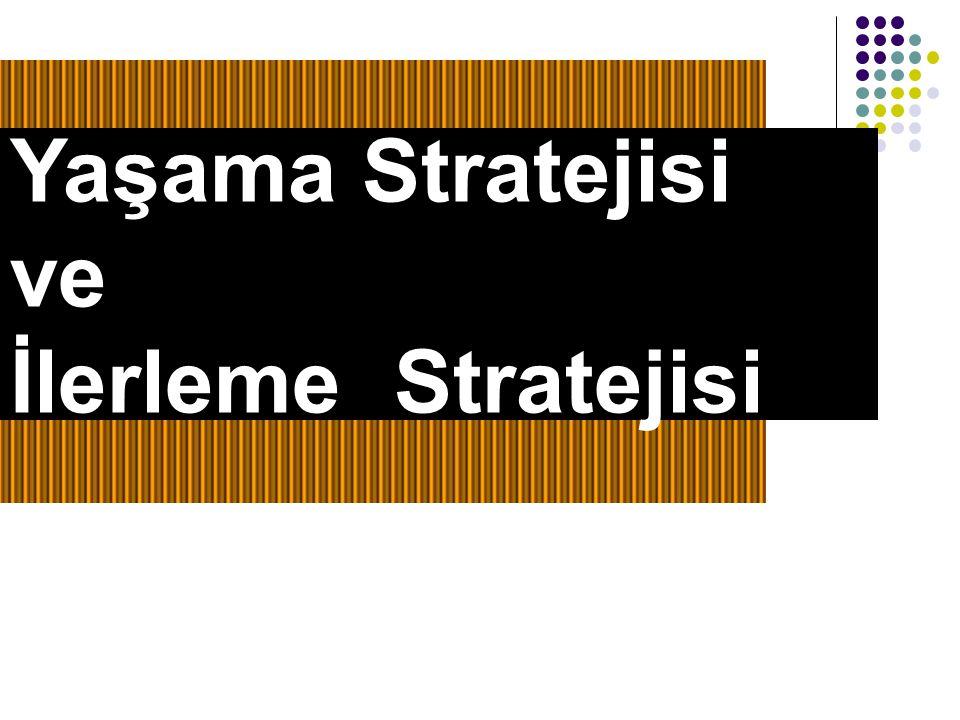 Yaşama Stratejisi ve İlerleme Stratejisi 11