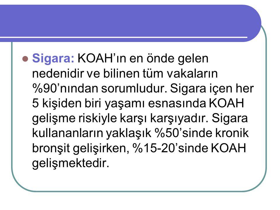 Sigara: KOAH'ın en önde gelen nedenidir ve bilinen tüm vakaların %90'nından sorumludur.