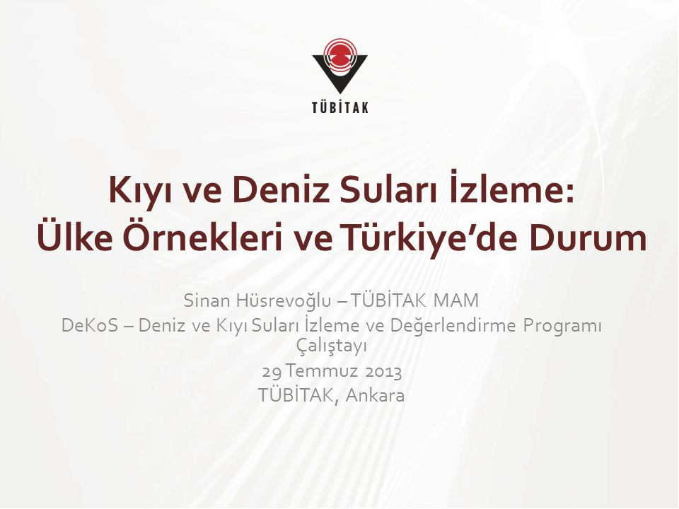 Kıyı ve Deniz Suları İzleme: Ülke Örnekleri ve Türkiye'de Durum