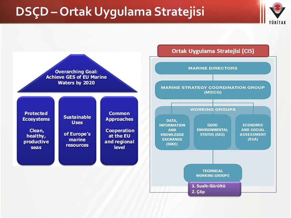 DSÇD – Ortak Uygulama Stratejisi