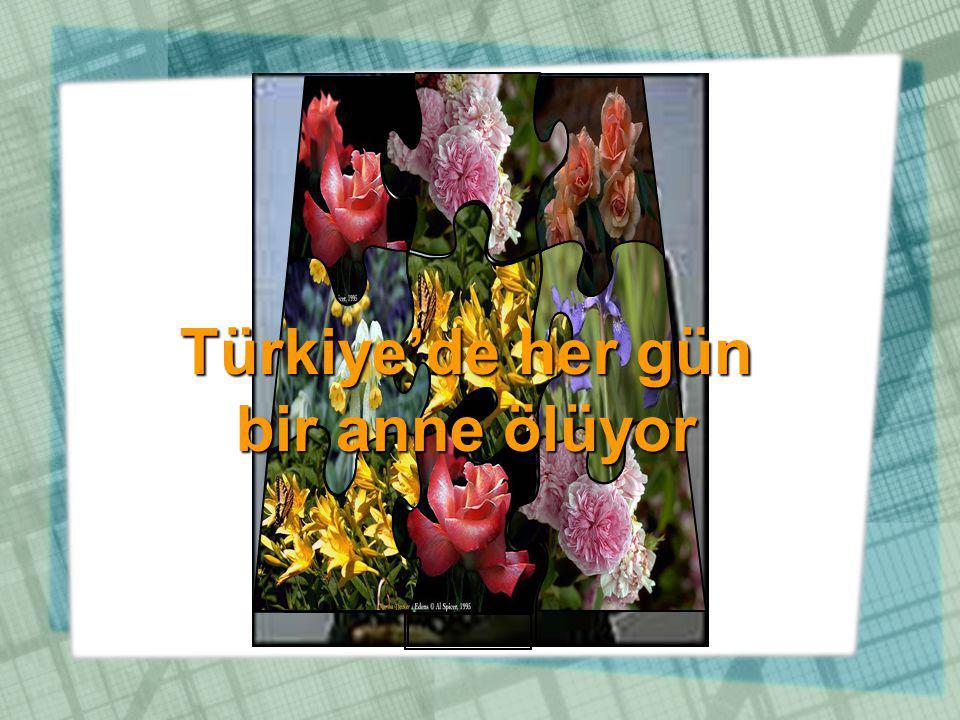 Türkiye'de her gün bir anne ölüyor