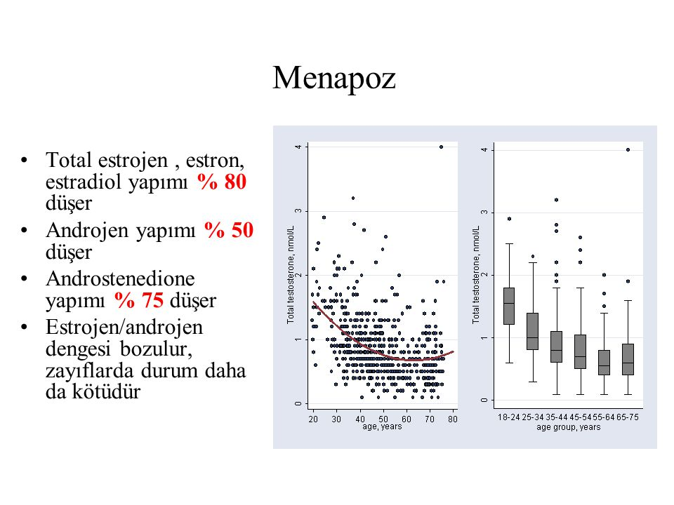 Menapoz Total estrojen , estron, estradiol yapımı % 80 düşer