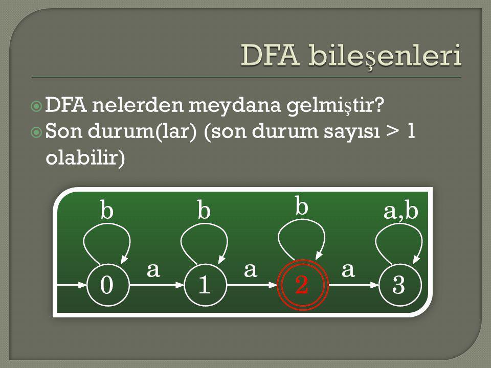 DFA bileşenleri DFA nelerden meydana gelmiştir