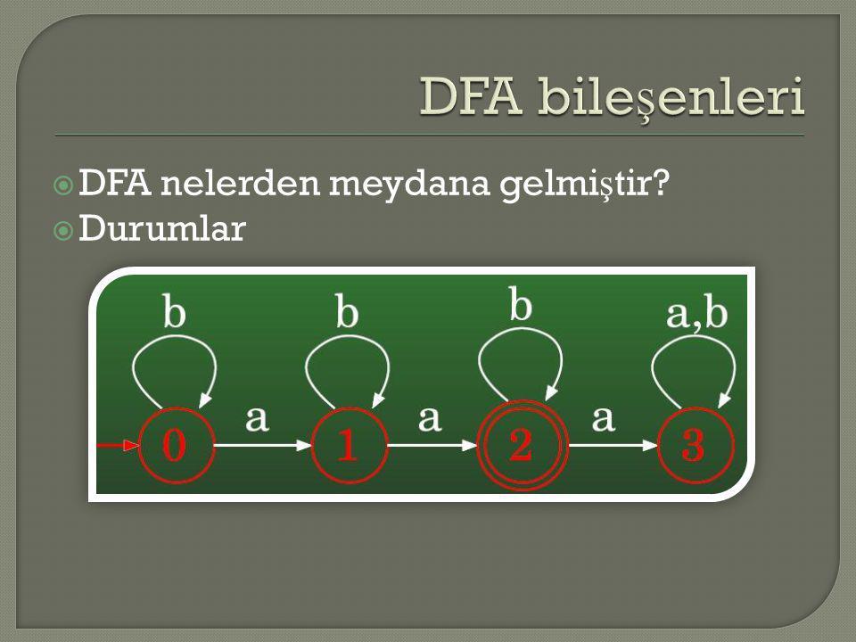DFA bileşenleri DFA nelerden meydana gelmiştir Durumlar