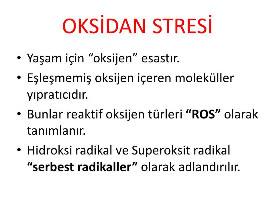 OKSİDAN STRESİ Yaşam için oksijen esastır.