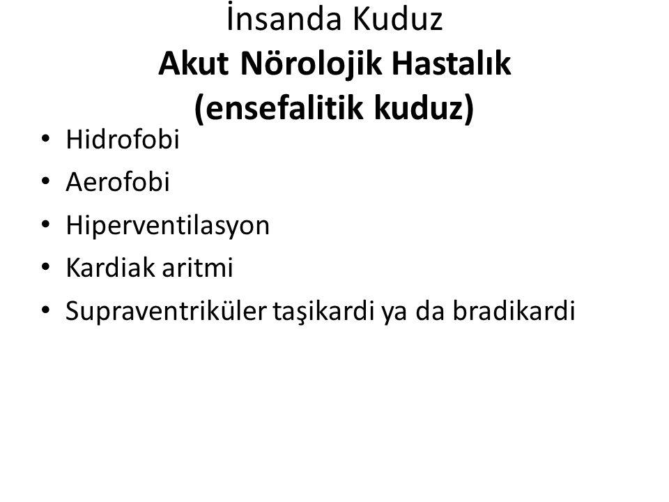 İnsanda Kuduz Akut Nörolojik Hastalık (ensefalitik kuduz)