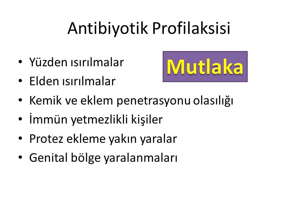 Antibiyotik Profilaksisi
