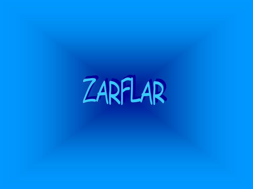 ZARFLAR