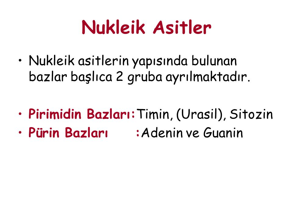 Nukleik Asitler Nukleik asitlerin yapısında bulunan bazlar başlıca 2 gruba ayrılmaktadır. Pirimidin Bazları:Timin, (Urasil), Sitozin.