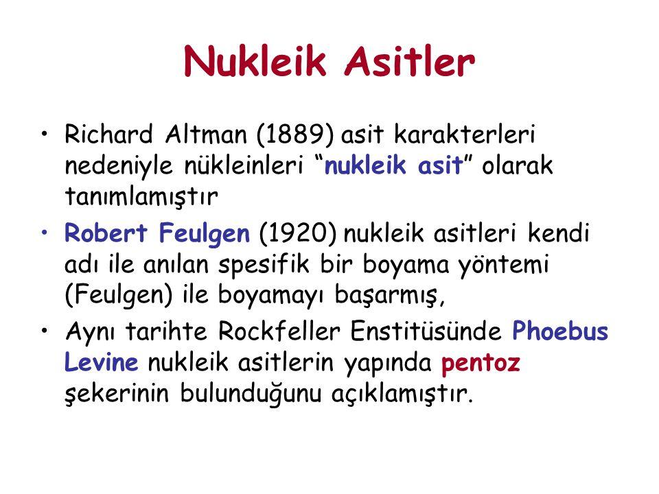 Nukleik Asitler Richard Altman (1889) asit karakterleri nedeniyle nükleinleri nukleik asit olarak tanımlamıştır.