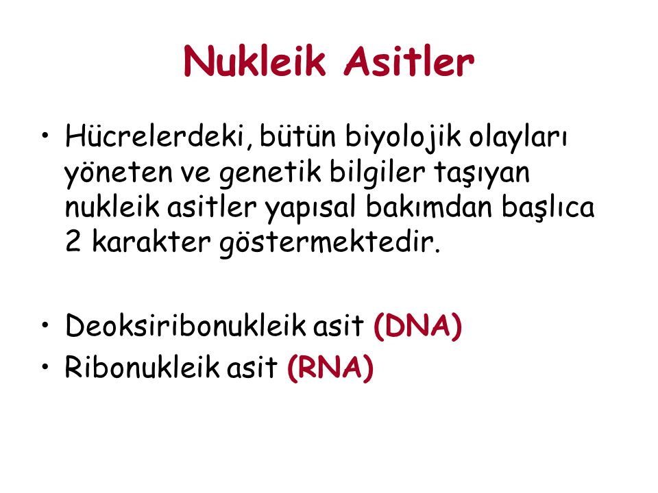 Nukleik Asitler