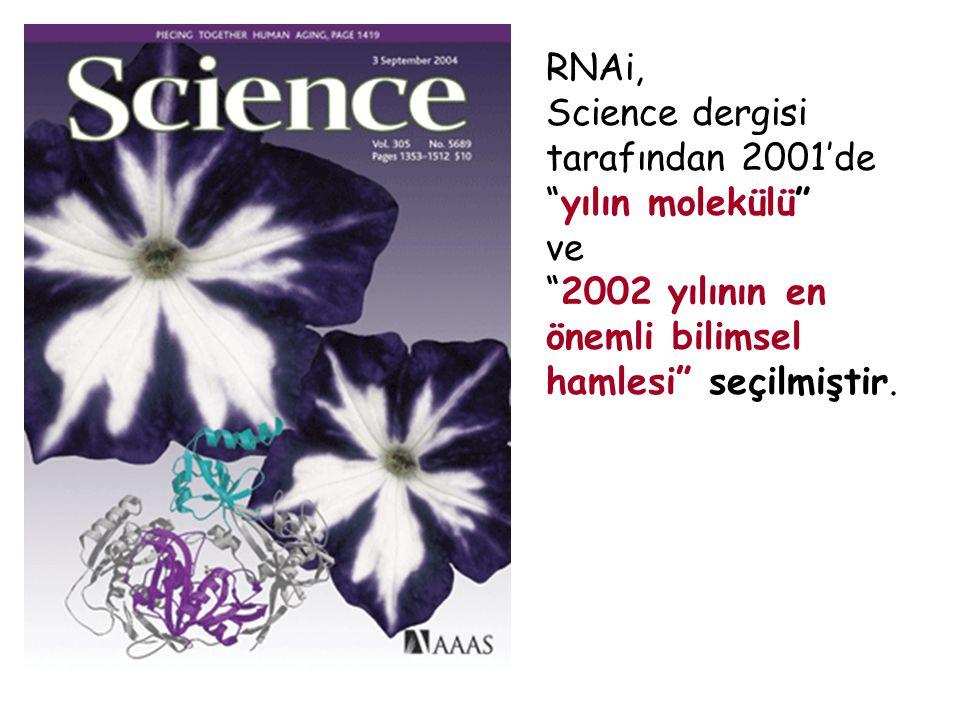 RNAi, Science dergisi tarafından 2001'de yılın molekülü ve.