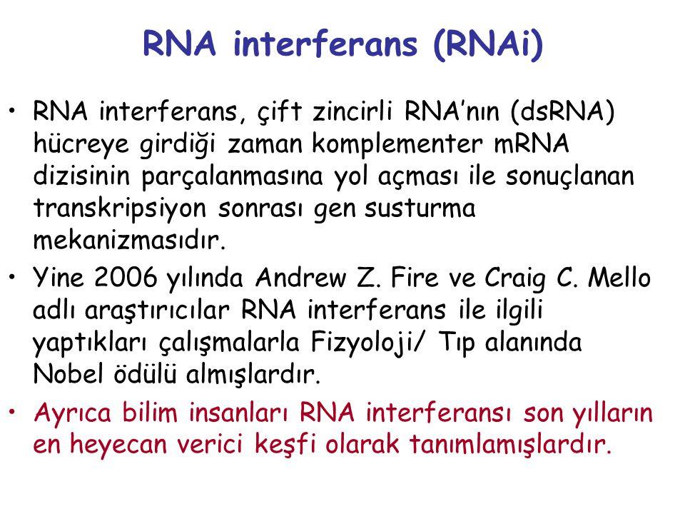 RNA interferans (RNAi)
