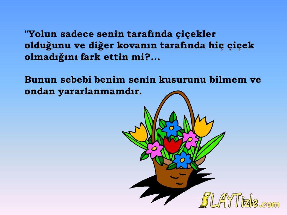 Yolun sadece senin tarafında çiçekler olduğunu ve diğer kovanın tarafında hiç çiçek olmadığını fark ettin mi ...