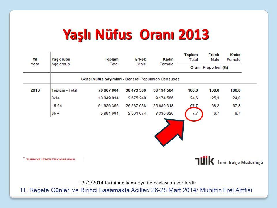 Yaşlı Nüfus Oranı 2013 11.