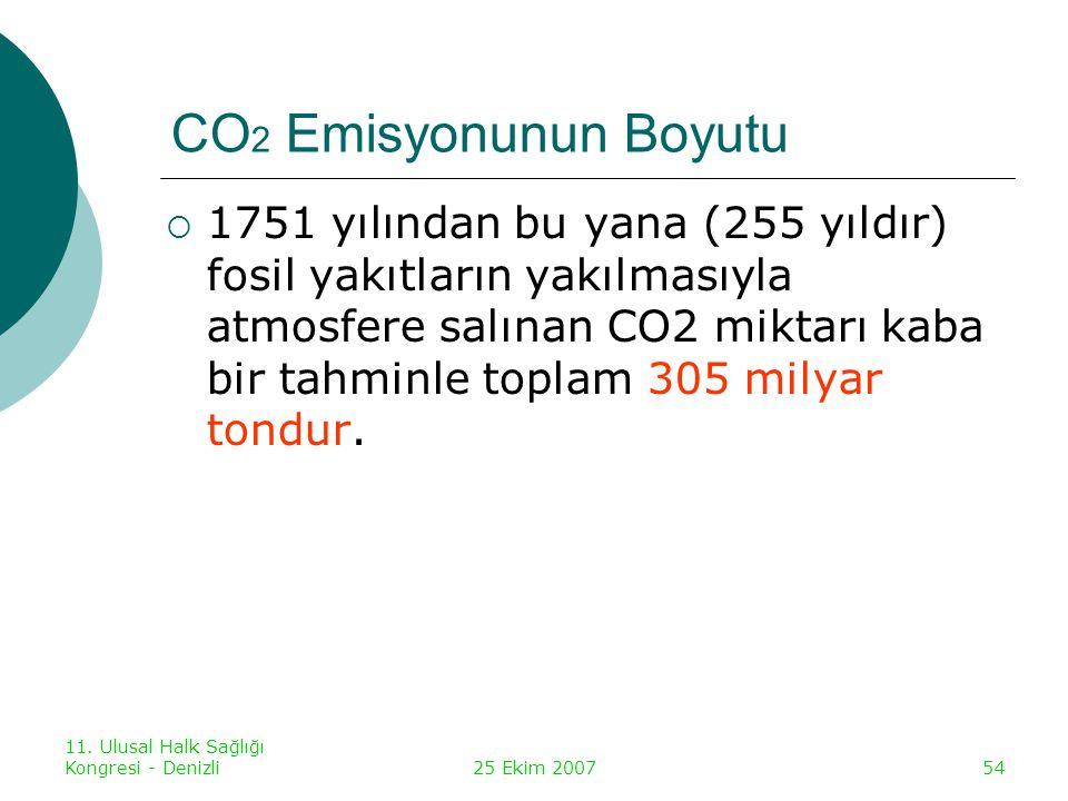 CO2 Emisyonunun Boyutu