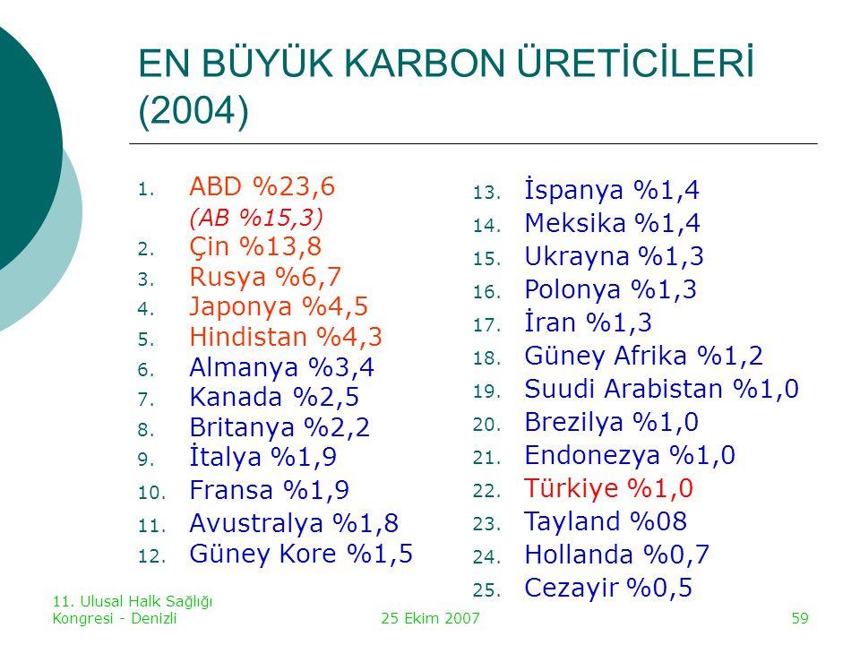 EN BÜYÜK KARBON ÜRETİCİLERİ (2004)