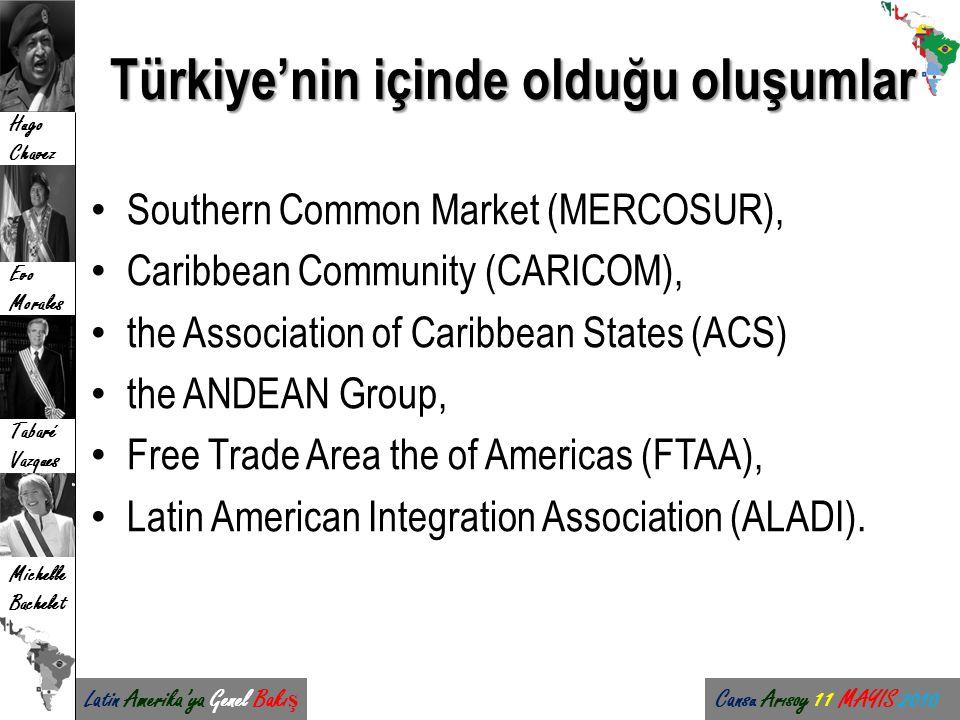 Türkiye'nin içinde olduğu oluşumlar