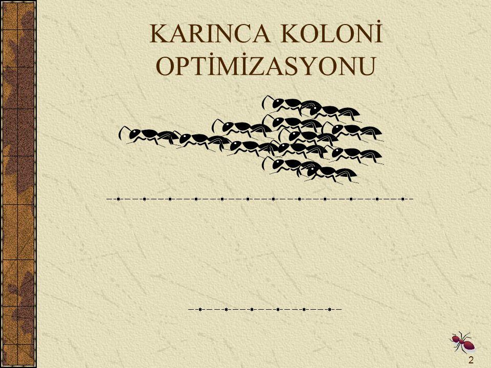 KARINCA KOLONİ OPTİMİZASYONU