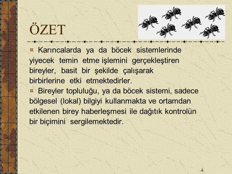 ÖZET Karıncalarda ya da böcek sistemlerinde
