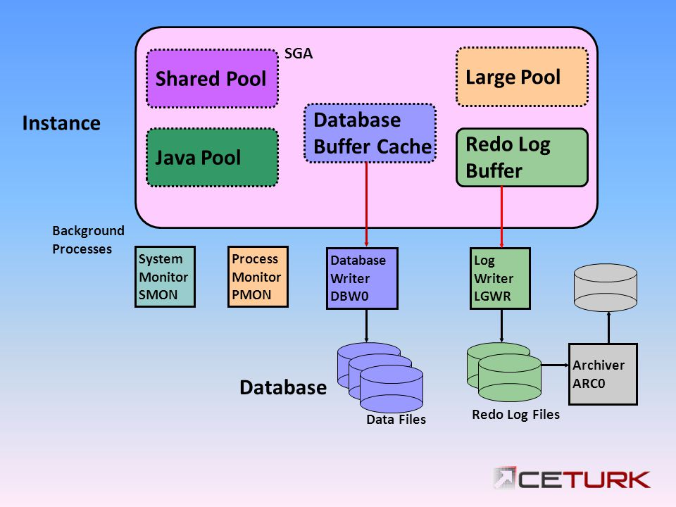 Shared Pool Large Pool Database Instance Buffer Cache Redo Log