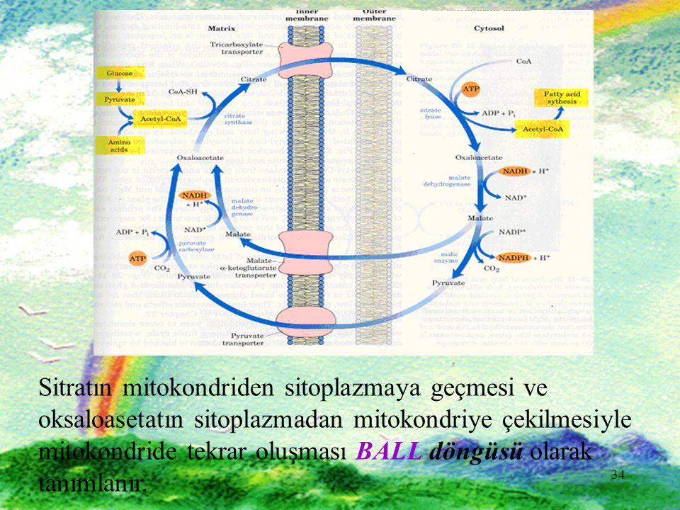 Sitratın mitokondriden sitoplazmaya geçmesi ve oksaloasetatın sitoplazmadan mitokondriye çekilmesiyle mitokondride tekrar oluşması BALL döngüsü olarak tanımlanır.