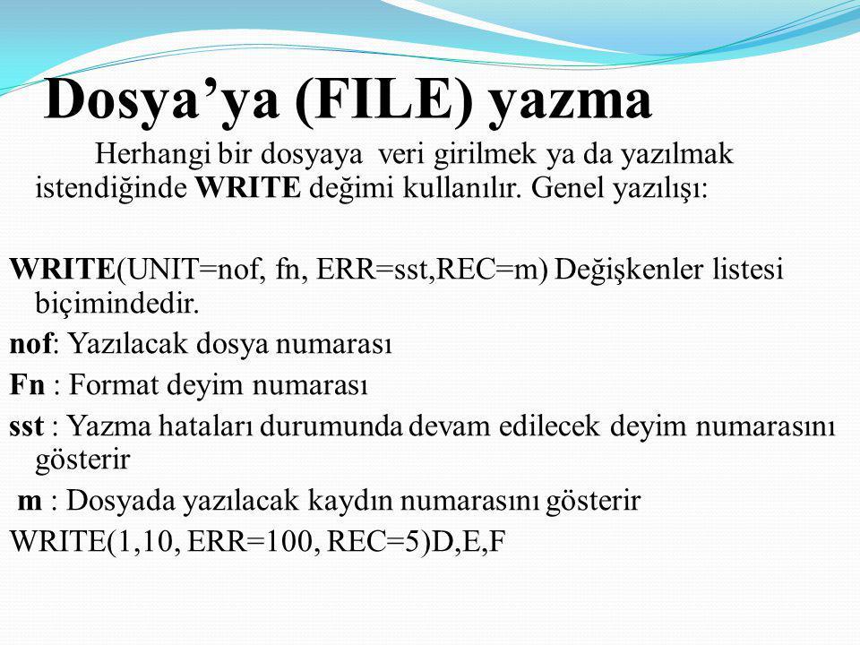 Dosya'ya (FILE) yazma