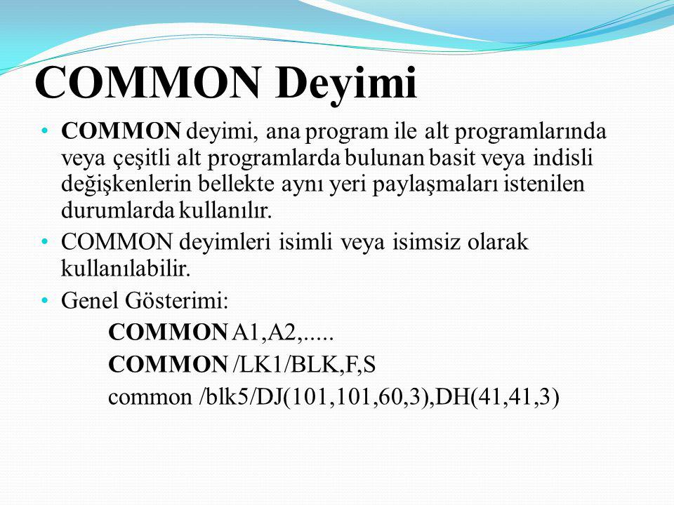 COMMON Deyimi