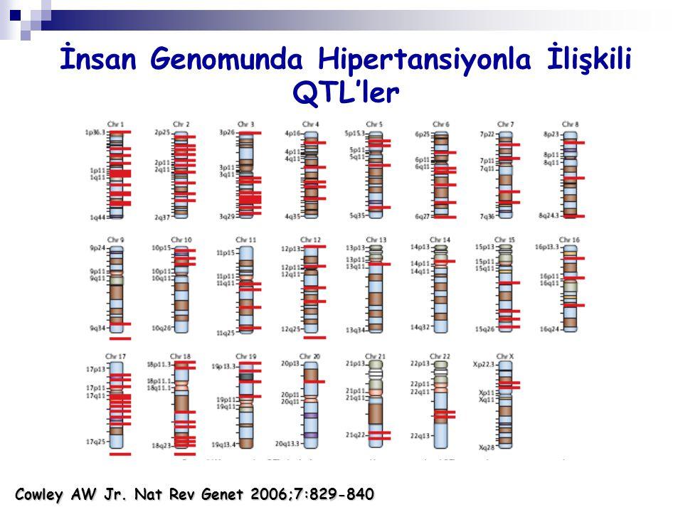 İnsan Genomunda Hipertansiyonla İlişkili QTL'ler