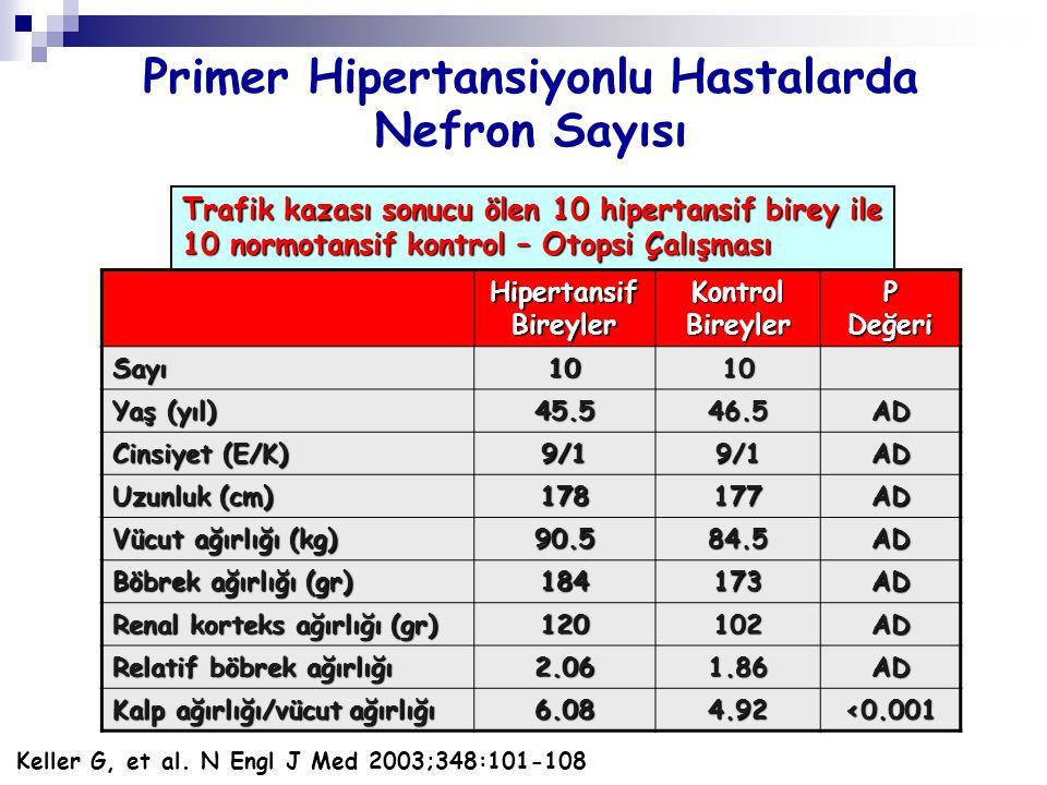 Primer Hipertansiyonlu Hastalarda Nefron Sayısı