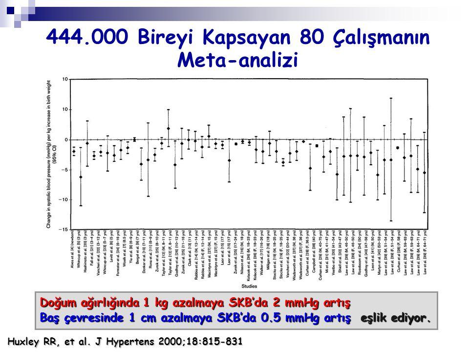 444.000 Bireyi Kapsayan 80 Çalışmanın Meta-analizi