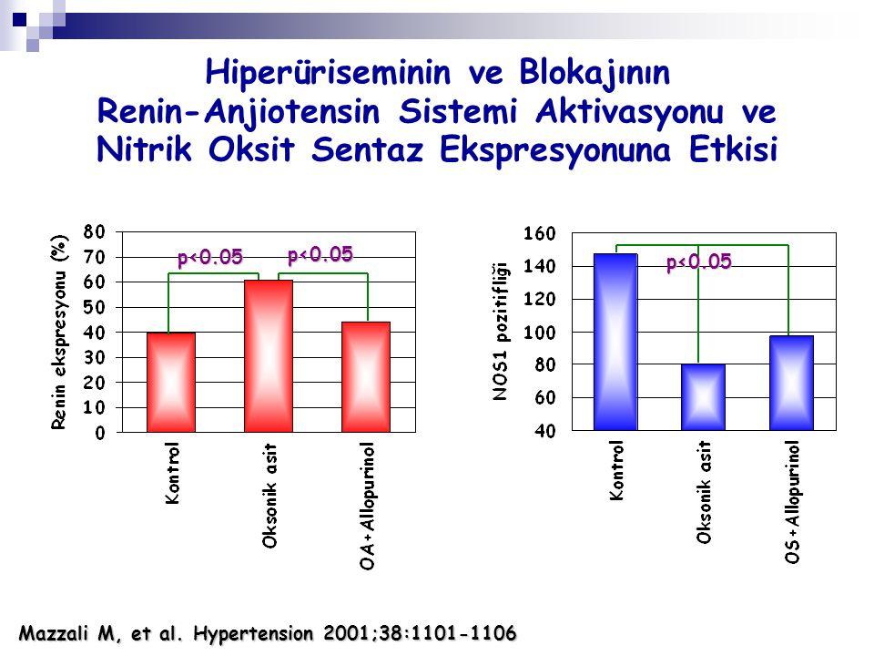 Hiperüriseminin ve Blokajının Renin-Anjiotensin Sistemi Aktivasyonu ve Nitrik Oksit Sentaz Ekspresyonuna Etkisi