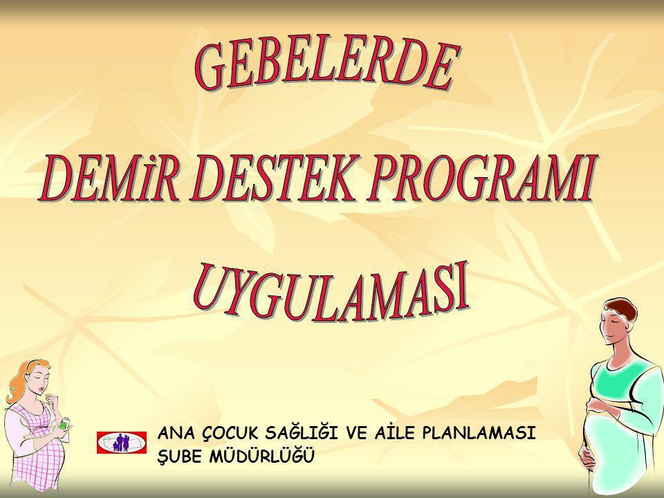 GEBELERDE DEMİR DESTEK PROGRAMI UYGULAMASI