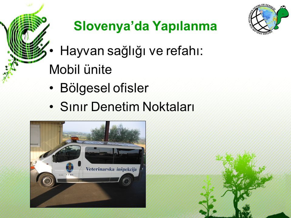 Slovenya'da Yapılanma