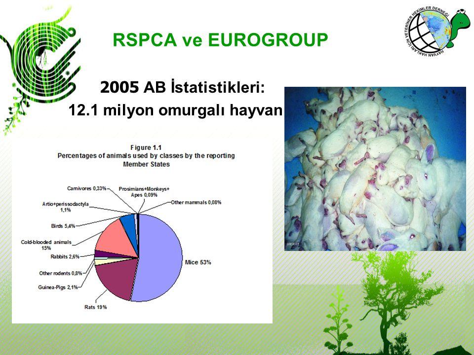 RSPCA ve EUROGROUP 2005 AB İstatistikleri: 12.1 milyon omurgalı hayvan