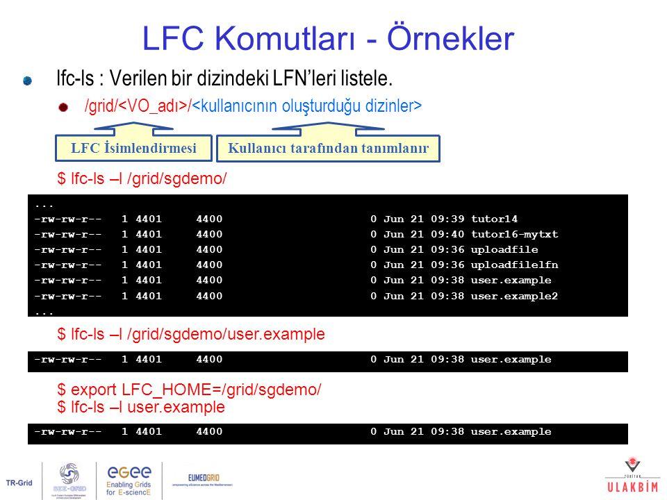 LFC Komutları - Örnekler