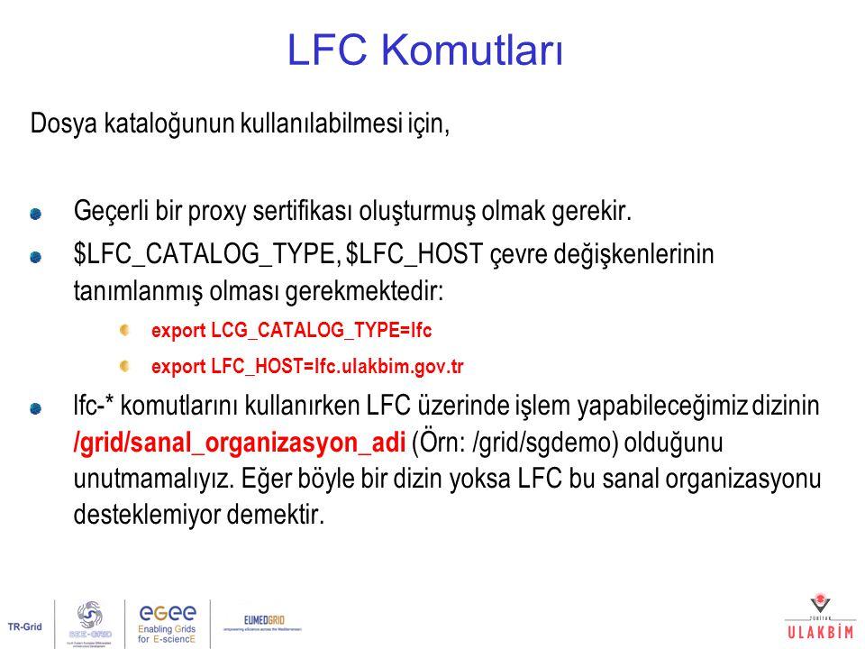 LFC Komutları Dosya kataloğunun kullanılabilmesi için,