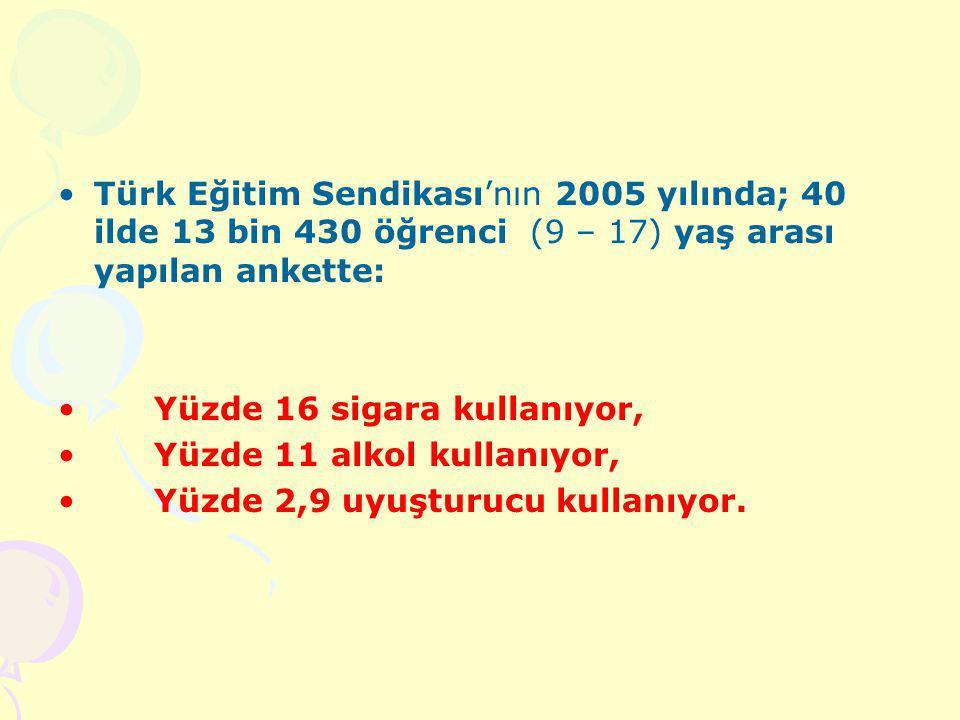 Türk Eğitim Sendikası'nın 2005 yılında; 40 ilde 13 bin 430 öğrenci (9 – 17) yaş arası yapılan ankette: