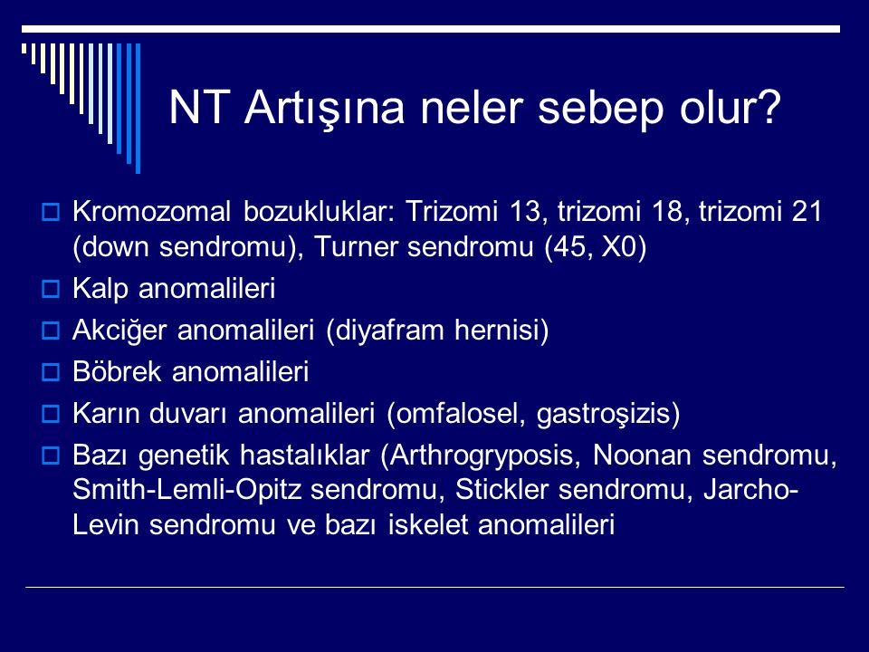 NT Artışına neler sebep olur