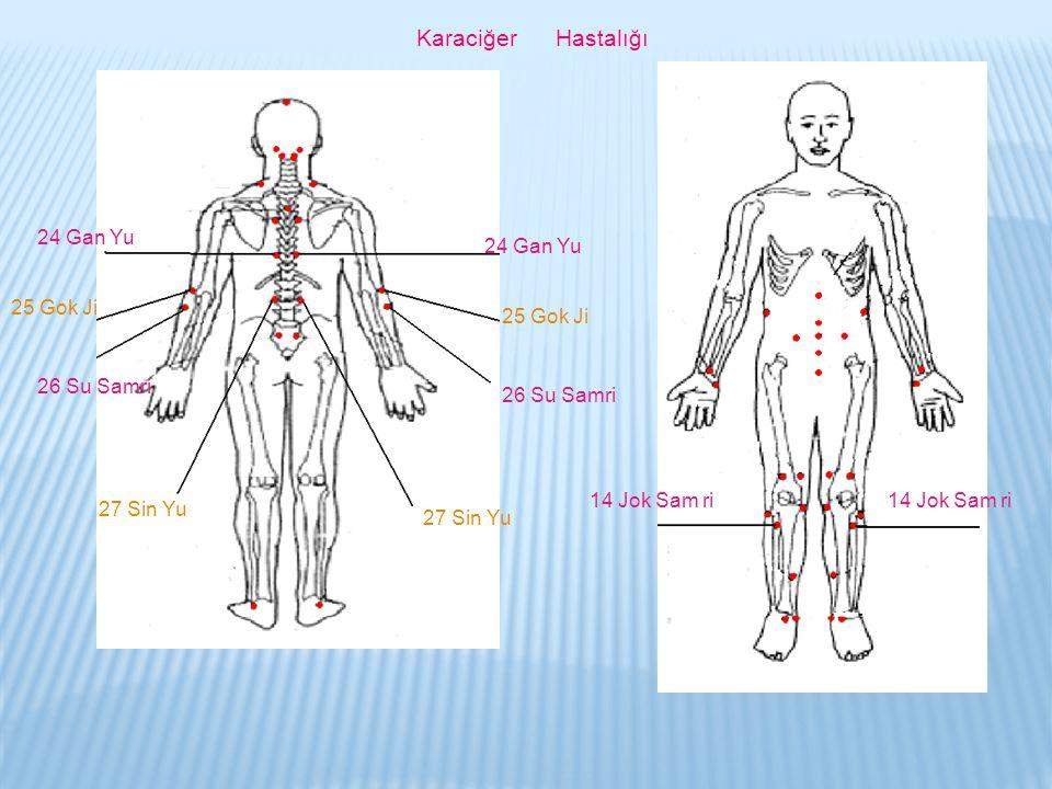 Karaciğer Hastalığı 24 Gan Yu. 24 Gan Yu. 25 Gok Ji. 25 Gok Ji. 26 Su Samri. 26 Su Samri.