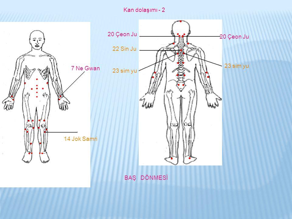 Kan dolaşımı - 2 20 Çeon Ju. 20 Çeon Ju. 22 Sin Ju. 23 sim yu. 7 Ne Gwan. 23 sim yu. 14 Jok Samri.