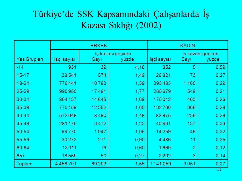 Türkiye'de SSK Kapsamındaki Çalışanlarda İş Kazası Sıklığı (2002)